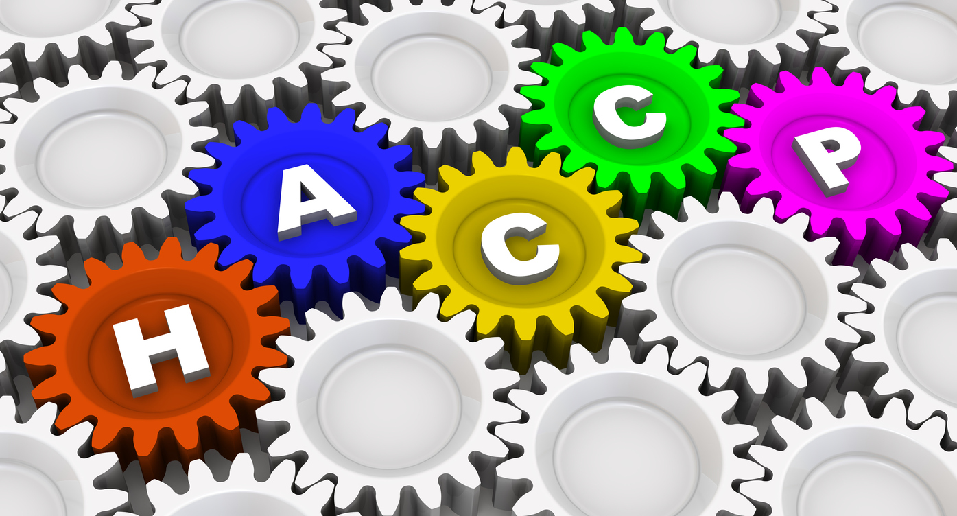 """Abbreviation """"HACCP"""" written on colorful gears"""